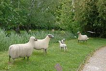 Moutons_Lalanne